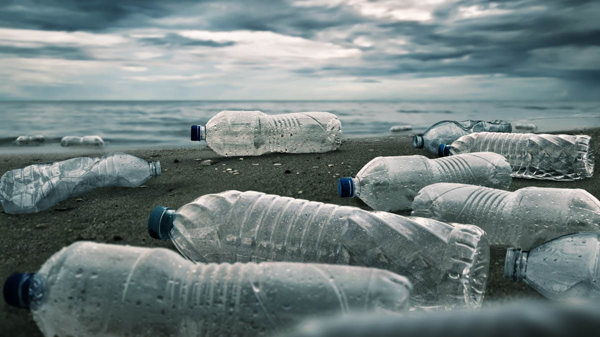 Detecting and collecting marine plastics
