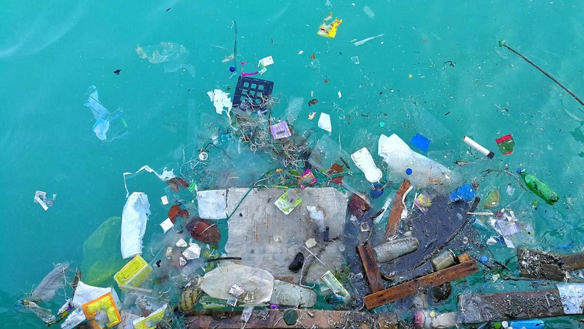 Challenge #2: Healthy oceans