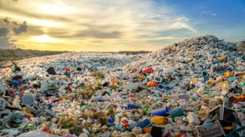 Circular economy as a vaccine against pandemics like COVID-19